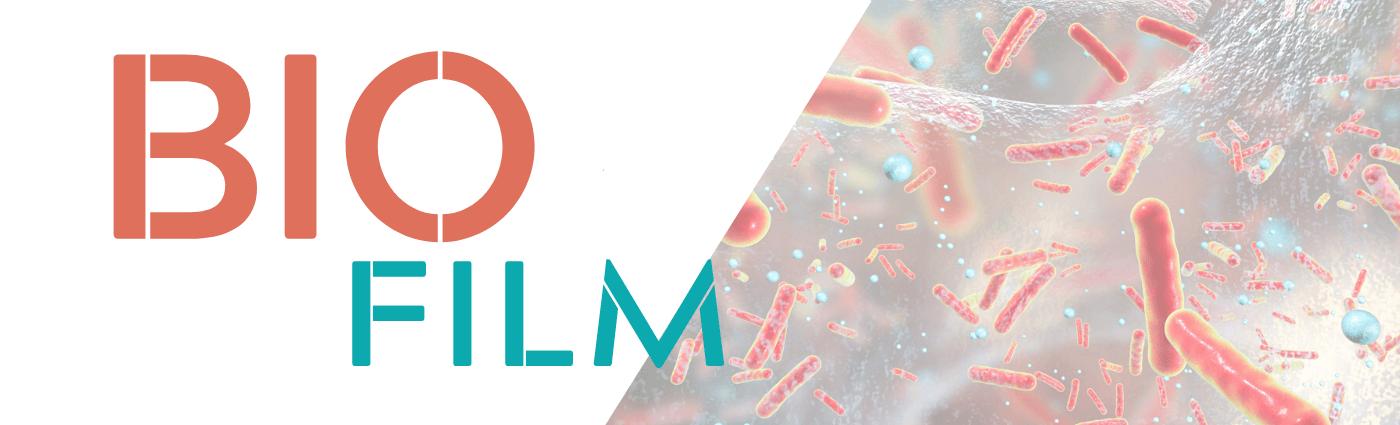 biofilm - bakterie Legionella